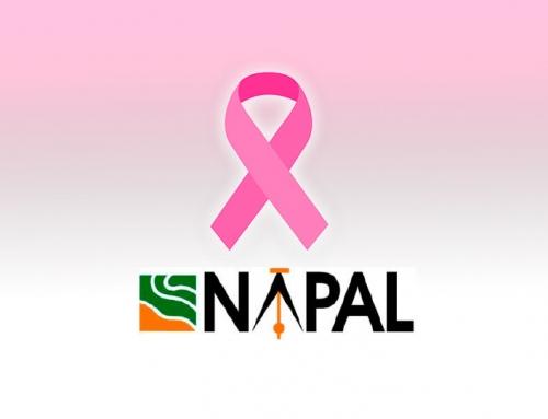 """Napal colabora en la VI RUTA SOLIDARIA """"SEGUIMOS CAMINANDO"""""""